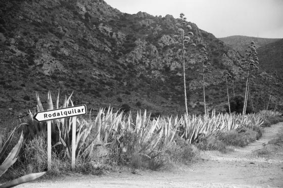 Camino a Rodalquilar  © Ana Asensio