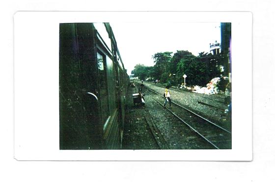 © Daniel Natoli - La jerarquía entre coches, peatones y animales es mínima. Tomada con una Diana F+ con un acople trasero para Polaroid.